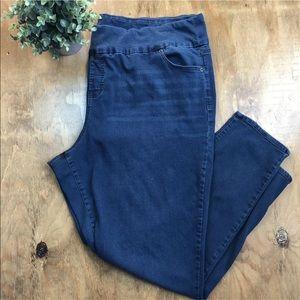 Avenue Denim Skinny Jeans Jegging Size 26/28T Tall